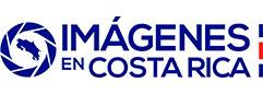 Logo-IECR