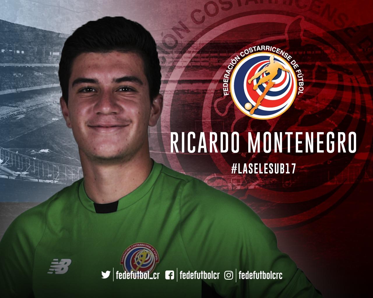 ¿Quién es Ricardo Montenegro?